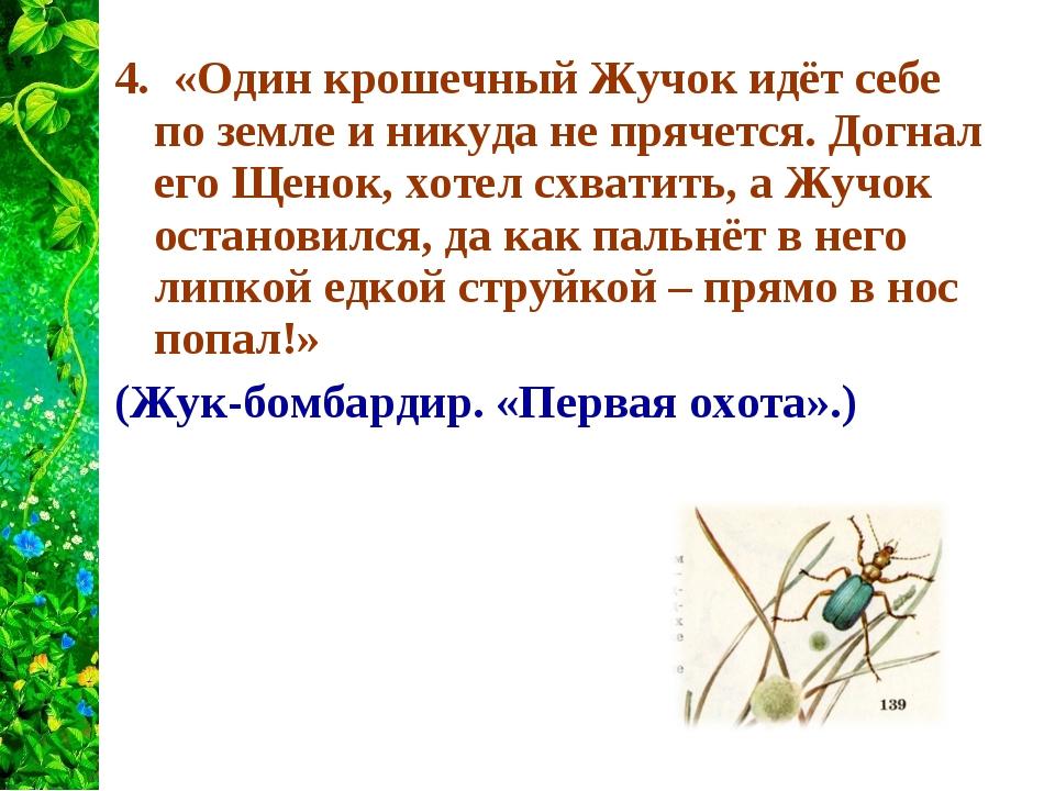 4. «Один крошечный Жучок идёт себе по земле и никуда не прячется. Догнал его...