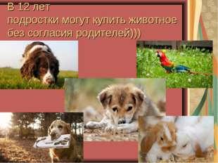 В 12 лет подростки могут купить животное без согласия родителей)))