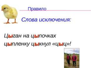 Правило Слова исключения: Цыган на цыпочках цыпленку цыкнул «цыц»!