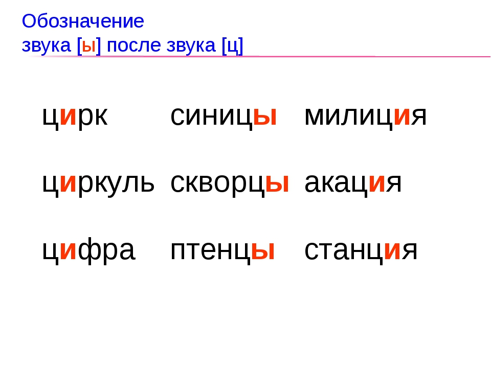 Обозначение звука [ы] после звука [ц] цирк циркуль цифрасиницы скворцы птенц...