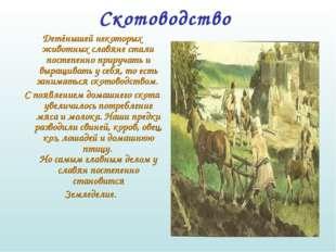 Скотоводство  Детёнышей некоторых животных славяне стали постепенно прируча