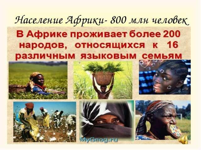 Население Африки- 800 млн человек
