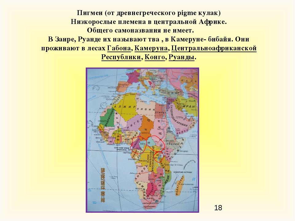 Пигмеи (от древнегреческого pigme кулак) Низкорослые племена в центральной Аф...