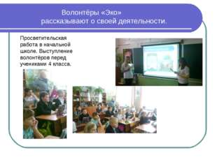 Волонтёры «Эко» рассказывают о своей деятельности. Просветительская работа в