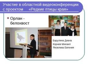 Участие в областной видеоконференции с проектом «Редкие птицы края» Орлан - б
