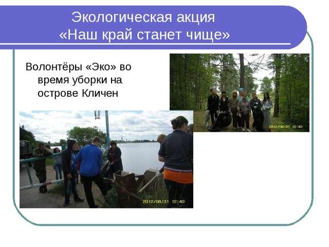 Экологическая акция «Наш край станет чище» Волонтёры «Эко» во время уборки н...