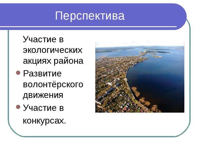 Перспектива Участие в экологических акциях района Развитие волонтёрского дви...