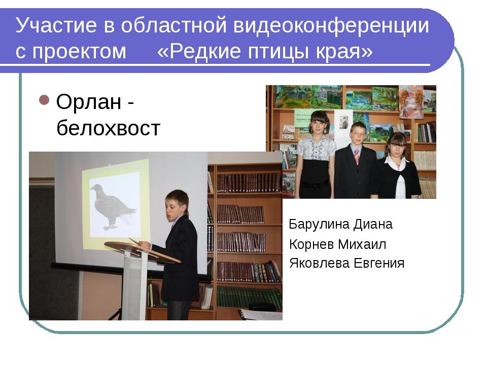 Участие в областной видеоконференции с проектом «Редкие птицы края» Орлан - б...