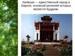 Калмыки — единственный народ в Европе, основной религией которых является буд
