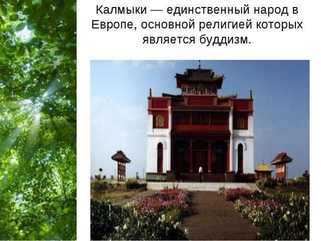 Калмыки — единственный народ в Европе, основной религией которых является буд...