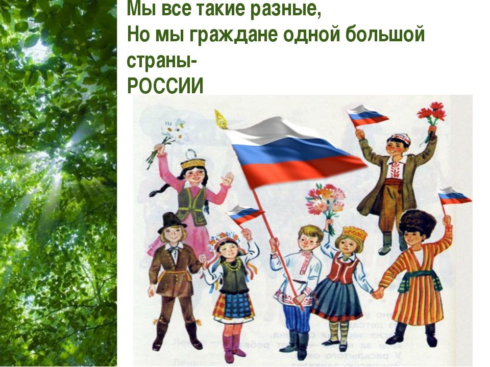 Мы все такие разные, Но мы граждане одной большой страны- РОССИИ Free Powerpo...