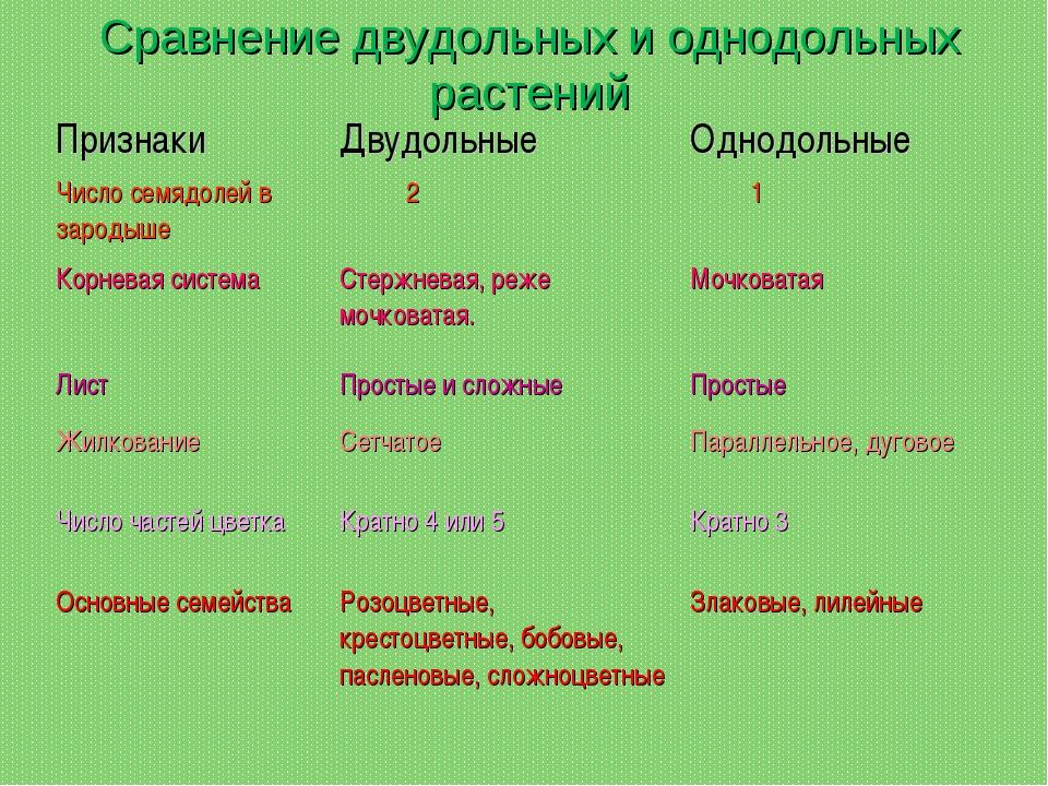 Сравнение двудольных и однодольных растений ПризнакиДвудольныеОднодольные Ч...