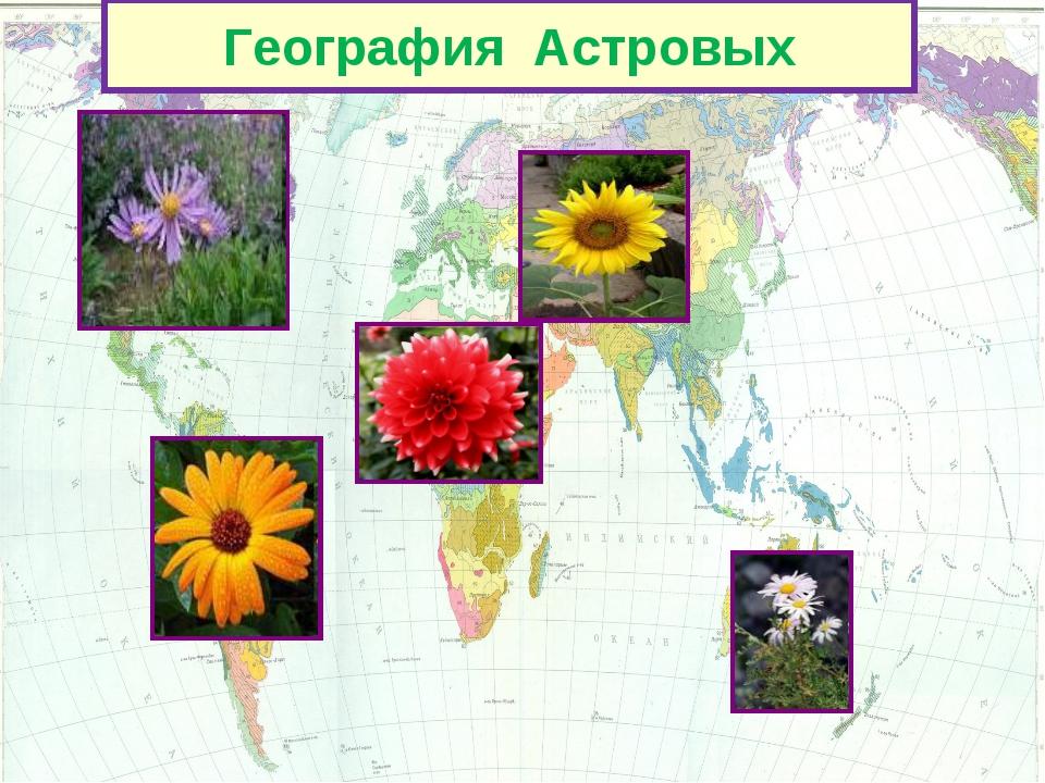 География Астровых