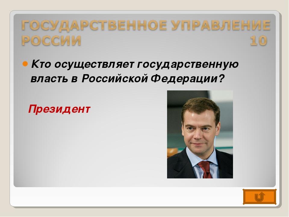 Кто осуществляет государственную власть в Российской Федерации? Президент