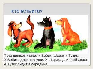 КТО ЕСТЬ КТО? Трёх щенков назвали Бобик, Шарик и Тузик. У Бобика длинные уши