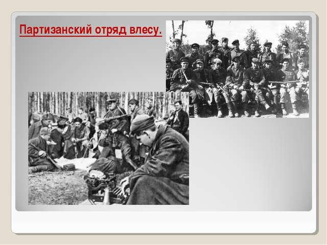 Партизанский отряд влесу.