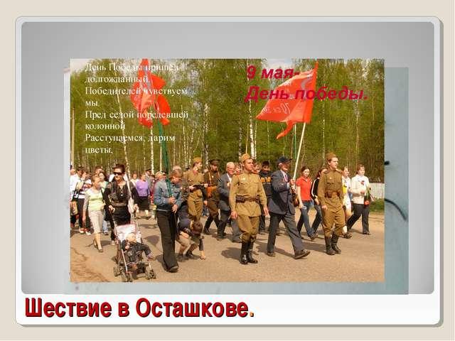 Шествие в Осташкове.