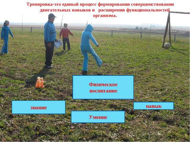 Физическое воспитание Умение навык знание Тренировка-это единый процесс форми...