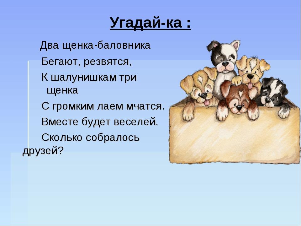 Два щенка-баловника Бегают, резвятся, К шалунишкам три щенка С громки...