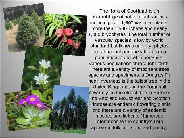 The flora of Scotland is an assemblage of native plant species including over...