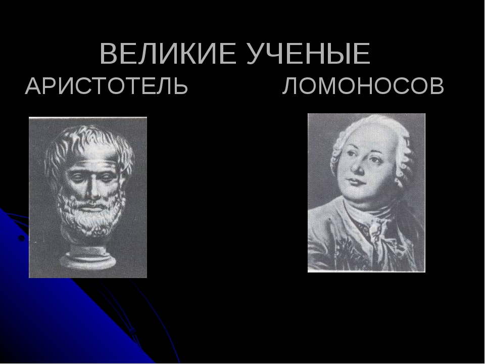ВЕЛИКИЕ УЧЕНЫЕ АРИСТОТЕЛЬ ЛОМОНОСОВ