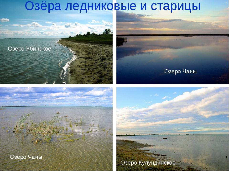 Озёра ледниковые и старицы Озеро Чаны Озеро Чаны Озеро Кулундинское Озеро Уби...