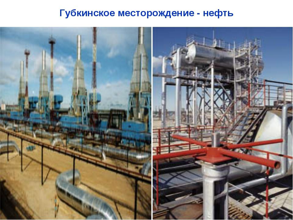 Губкинское месторождение - нефть