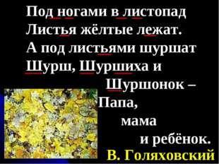 Под ногами в листопад Листья жёлтые лежат. А под листьями шуршат Шурш, Шурших
