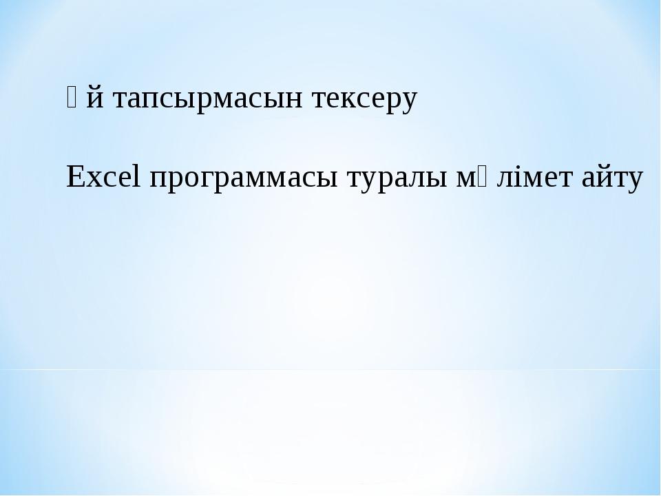 Үй тапсырмасын тексеру Excel программасы туралы мәлімет айту