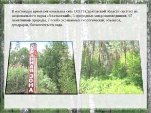 В настоящее время региональная сеть ООПТ Саратовской области состоит из: наци
