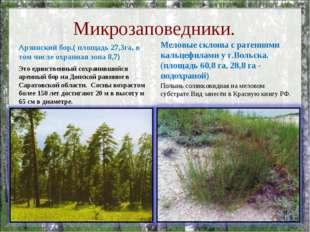 Микрозаповедники. Арзянский бор.( площадь 27,3га, в том числе охранная зона 8