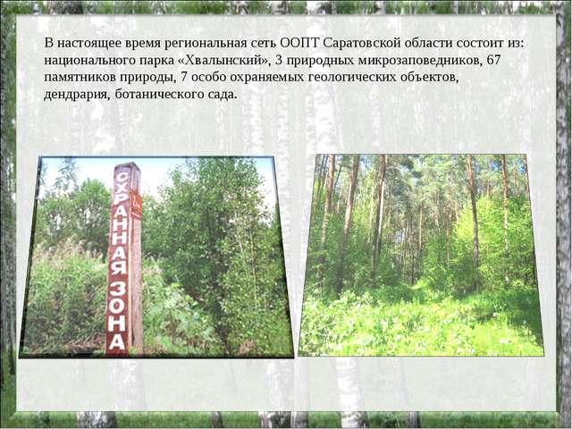 В настоящее время региональная сеть ООПТ Саратовской области состоит из: наци...