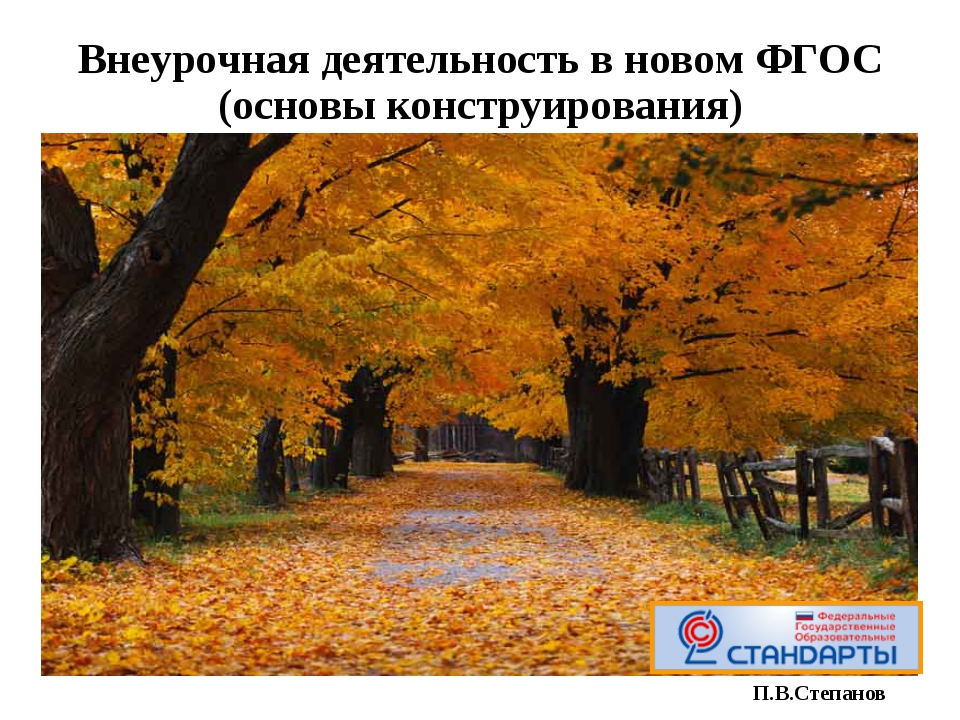 Внеурочная деятельность в новом ФГОС (основы конструирования) П.В.Степанов