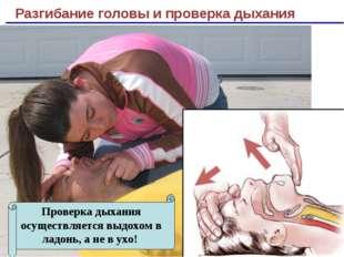 Разгибание головы и проверка дыхания Проверка дыхания осуществляется выдохом