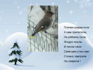 Птички-свиристели К нам прилетели, На рябинку сели, Ягодок поели. И песни св