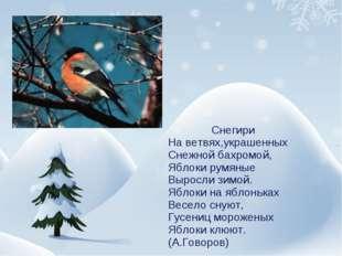 Снегири На ветвях,украшенных Снежной бахромой, Яблоки румяные Выросли зимой.