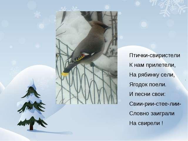 Птички-свиристели К нам прилетели, На рябинку сели, Ягодок поели. И песни св...