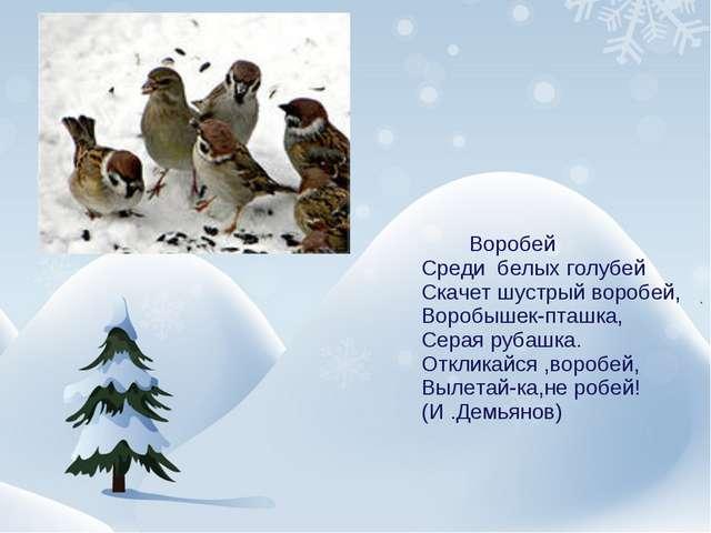 Воробей Среди белых голубей Скачет шустрый воробей, Воробышек-пташка, Серая...