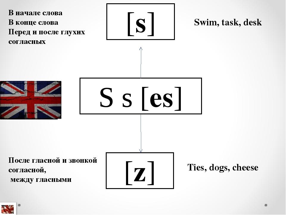 S s [es] [s] [z] В начале слова В конце слова Перед и после глухих согласных...