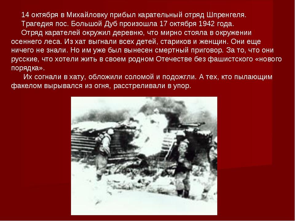 14 октября в Михайловку прибыл карательный отряд Шпренгеля. Трагедия пос. Бо...