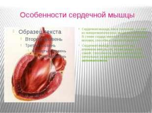 Особенности сердечной мышцы Сердечная мышца, как и скелетная, состоит из поп