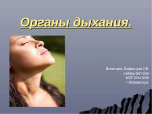 Органы дыхания. Выполнила: Бояринцева С.В. учитель биологии МОУ СОШ №36 г.Маг