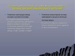 Отличия дыхательной системы млекопитающих от органов дыхания земноводных и ре