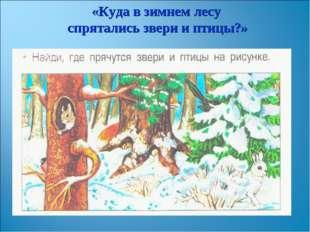 «Куда в зимнем лесу спрятались звери и птицы?»