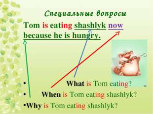 Специальные вопросы Tom is eating shashlyk now because he is hungry. What is