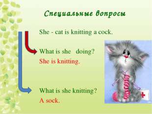Специальные вопросы She - cat is knitting a cock. What is she doing? She is k