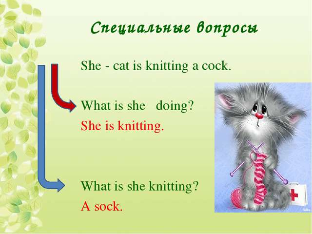 Специальные вопросы She - cat is knitting a cock. What is she doing? She is k...