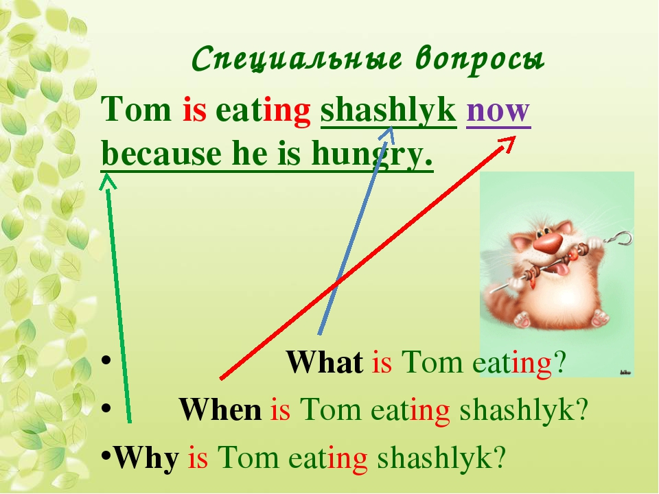 Специальные вопросы Tom is eating shashlyk now because he is hungry. What is...