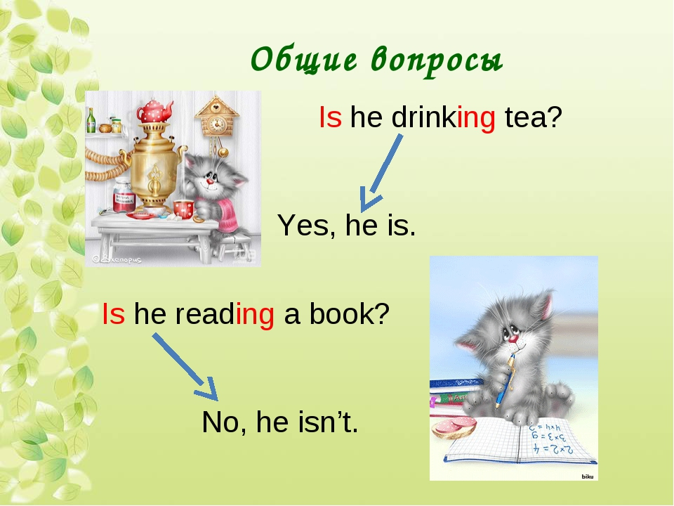 Общие вопросы Is he drinking tea? Yes, he is. Is he reading a book? No, he is...
