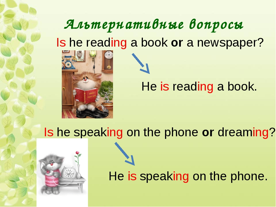 Альтернативные вопросы Is he reading a book or a newspaper? He is reading a b...